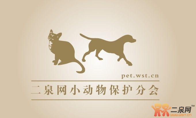 2884 人阅读 | 16 人讨论二泉网小动物协会logo等您来投票